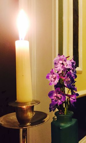Bluebell flambé! Candle Flame Burning Flower Indoors  Petal No People Close-up Fragility Freshness Home Interior Illuminated Tea Light Day