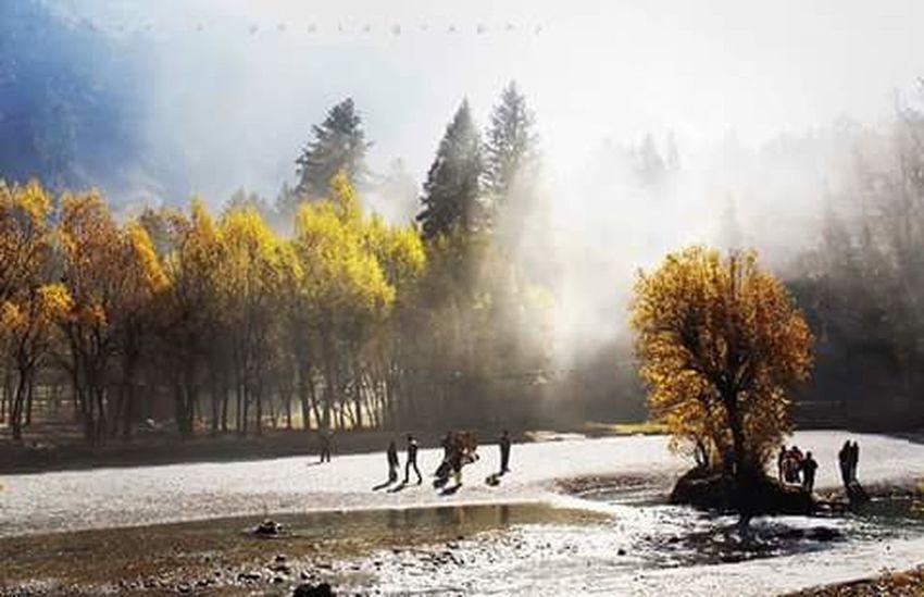 Showcase April Kashmir Kashmirphotographers Kashmir , India Betab Valley