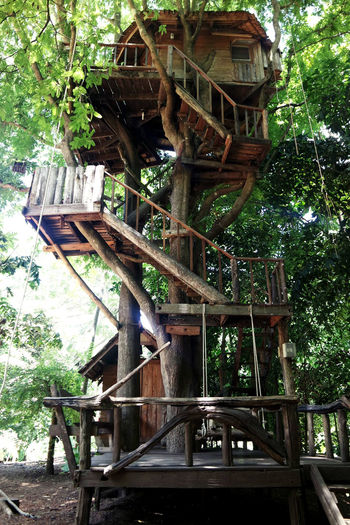 Architecture Built Structure Day Home Low Angle View Nature No People Outdoors Resort Swing Thailand Travel Tree Treehouse