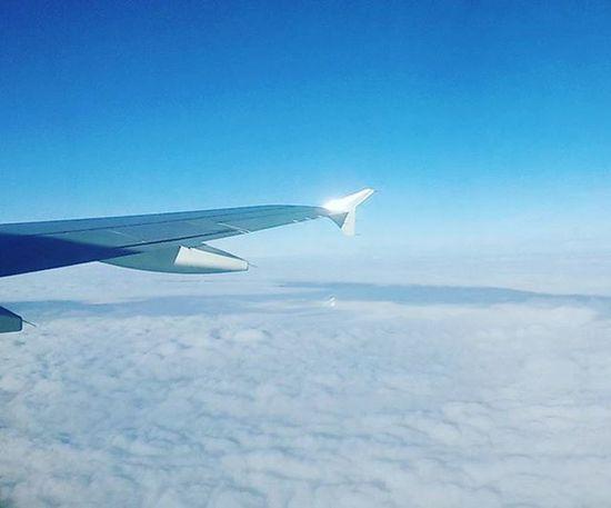 небо облако самолет перелёт путешествие синий голубой ясный солнце Чистота вата