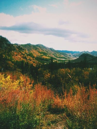 Autumn Colors Autumn Mood Walking Tour In The Moutains