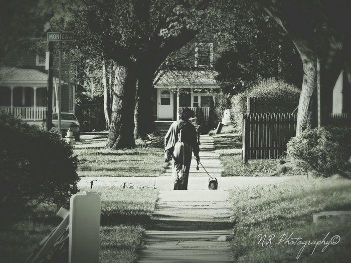 A walk in the neighborhood Street Photography Taking Photos Enjoying Life NiRobinson Rochester, NY
