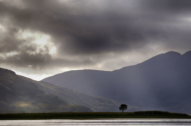 A lone tree located on an island in the middle of Loch Alsh, Highlands of Scotland Loch  Scotland Tree Beauty In Nature Cloud - Sky Environment Highlands Highlands Of Scotland Landscape Mountain No People Non-urban Scene Sky