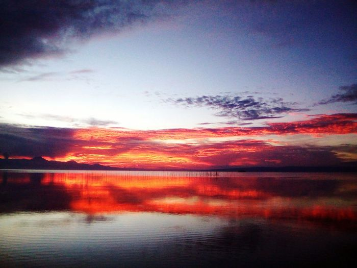 Dramatic Sky Sunset Reflection Scenics Nature Cloud - Sky Red Beauty In Nature Outdoors No People Multi Colored Sky Autumn Tranquility Water Tree Horizon Over Water Day First Eyeem Photo