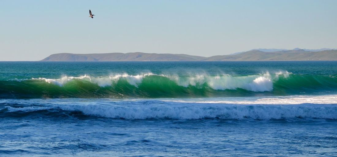 Sea Water Wave Mountain Scenics Motion Waterfront Beauty In Nature Clear Sky Nature Tranquil Scene Tranquility Outdoors Non-urban Scene Power In Nature Day Splashing Mountain Range Flying Seascape California Nature Travel Destinations Check This Out Ocean