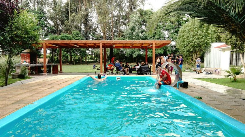 Swimming Pool Water Leisure Activity Tree Outdoors People Vacations Day Adults Only Adult Architecture