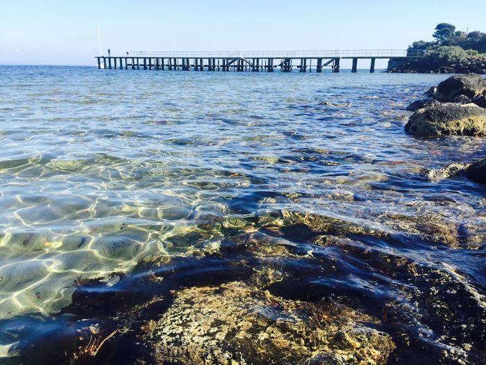 Seaside Hyaline
