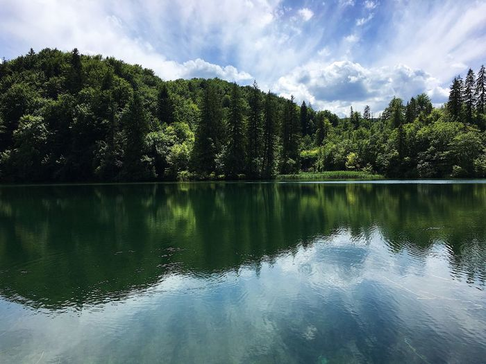 Plitvice lake Tree Sky Reflection Lake Water Cloud - Sky Beauty In Nature Nature Tranquil Scene Growth Outdoors Scenics Tranquility No People Day Green Color No Filter Croatia Plitvice National Park Investing In Quality Of Life Your Ticket To Europe The Week On EyeEm Clear Water Landscape Heaven Lost In The Landscape Perspectives On Nature