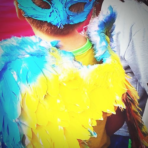 Perroquet de carnaval First Eyeem Photo