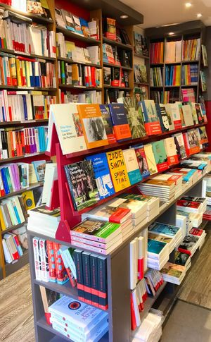 La librairie bleue Publication Book Variation Choice Large Group Of Objects For Sale Retail  Shelf Bookshelf Abundance No People Multi Colored Market