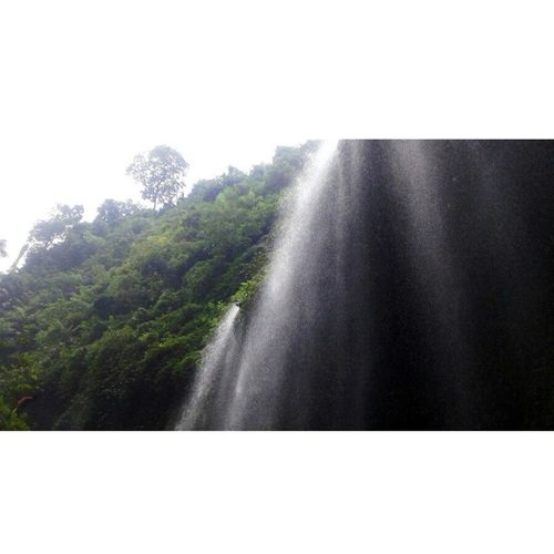 Air terjun Madakaripura - Probolinggo Exploreindonesia Lifeofexplore Loveindonesianature Loveindonesia Explore Exploreindonesia Neverstopexploring  Nature Journey Jomblopetualang