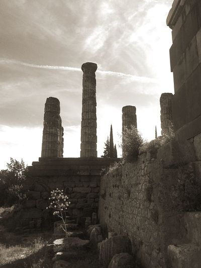 April Showers Appollon's Light in Delphi ✨the most powerful Oracle in Antiquity ✨ Energy Place Spring in an Archaeological Site for Bnw_friday_eyeemchallenge 🌾