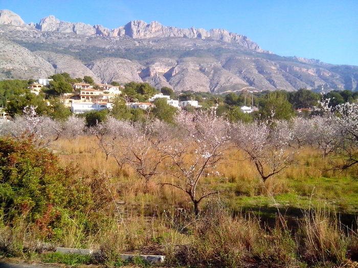 Sierra Bernia mountain range seen from Altea La Vella, Alicante, Spain Beauty In Nature Day Landscape Mountain Mountain Range Nature No People Outdoors Scenics Tranquility Vegetation