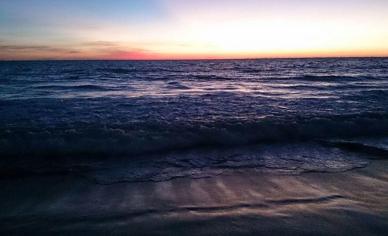 Pacific Ocean Ocean View Ocean Horizon Enjoying The View Sunset Watching The Sea