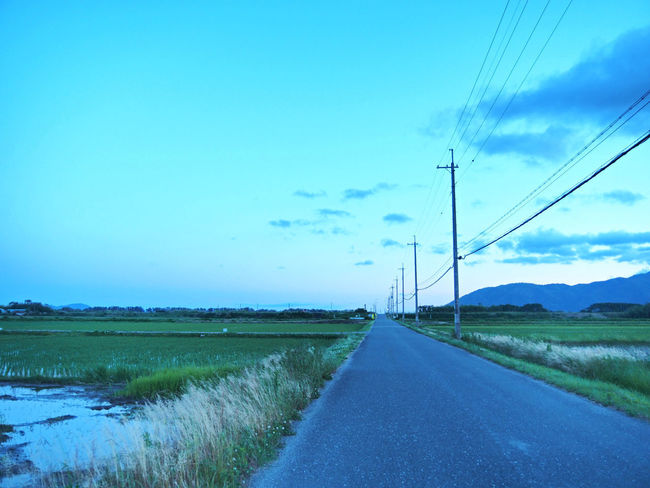 A landscape of a beautiful country road (綺麗な田舎道の風景) Ad Beautiful Blue Color Copy Space Country Road Green Nature Quiet Road The Countryside Black Color Blue Sky Brown Countryside Evening Landscape Margin No Person Nobody Paddy Field Silence Text Space White 水田 田舎道