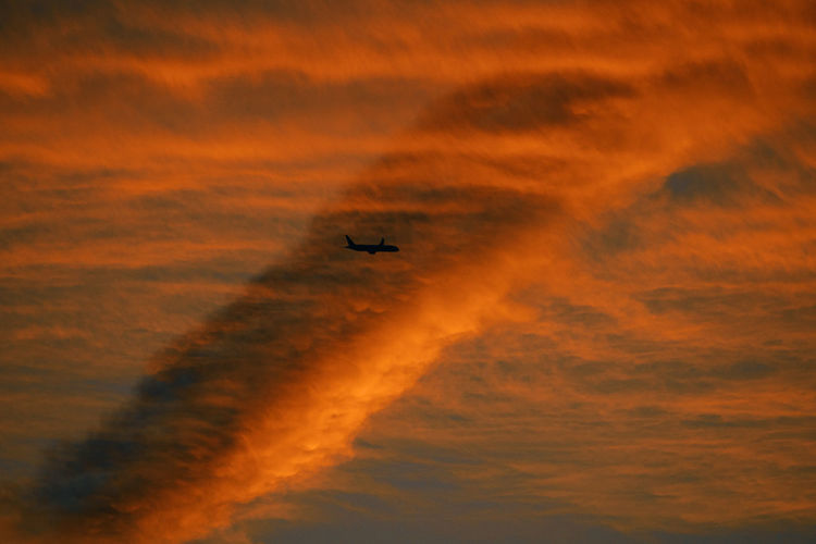 Low angle view of silhouette airplane against orange sky