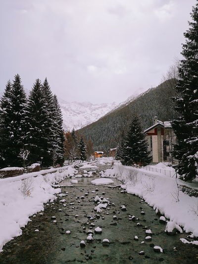 Ponte di Legno Smartphonephotography Huawei Huawei Mate 10 Pro Snow Snowing Tree White Winter Ponte Di Legno Piemonte Panorama POV River House No People Day Sky Snowing Nature