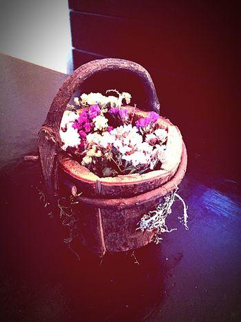 In Vino Veritas That's Me Mexico Enjoying Life Flowers Wood Me Arte Urbana Artistic Taking Photos