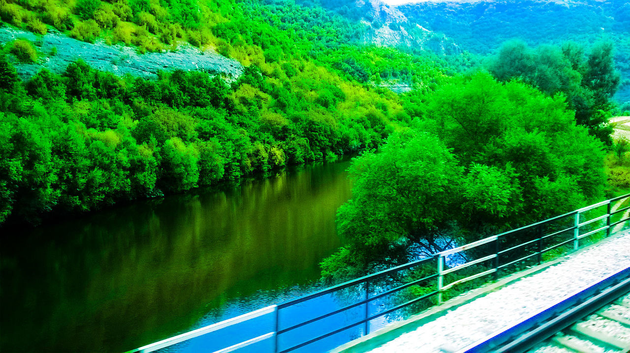 railing, tree, water, nature, high angle view, scenics, lush foliage, river, reflection, outdoors, tranquil scene, beauty in nature, day, no people, footbridge, sky