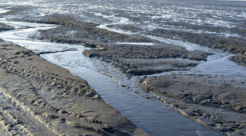 ebb tide in the north sea Neuwerk Isle Island Lower Saxony Germany North Sea National Park Ebb Tide Low Tide Sea Mudflat Mudflats Tideway No People Water Land Day Nature Tranquility Outdoors Environment Tranquil Scene Sand