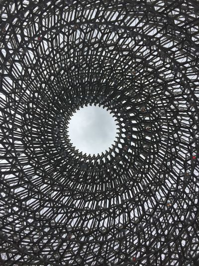 The Hive, Kew Gardens, London Low Angle View Circle No People Shape Directly Below Architecture Design Built Structure Metal