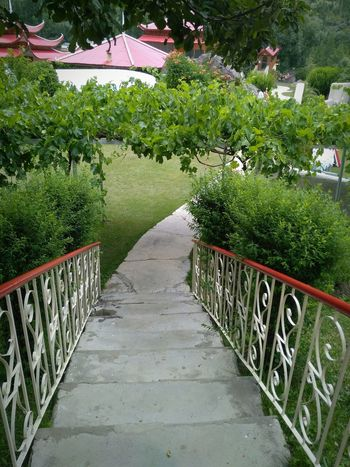 Shangrilla, Skardu, Pakistan Railing Growth Plant Outdoors Nature Day The Way Forward No People Tree Beauty In Nature Shangrilla Shangrilla Resort Serenity PhonePhotography Honor5x This Week On Eyeem Freshness Green Green Color Beauty In Nature Landscape Path Pathways Pathway To Heaven Calm