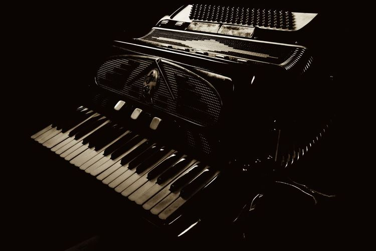 Accordion Arts Culture And Entertainment Dark Dark Photography Darkart Darkness Darkness And Light Detail Indoors  Music Music Musical Instrument Musical Instruments Sepia Sepia Photography Sepia Tone Loving Sepia_collection Sepiatone Still Life Stillife StillLife StillLifePhotography Technology
