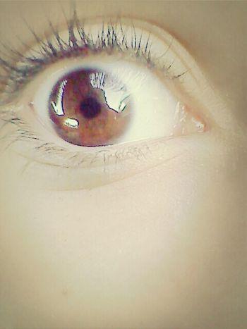 Real Eyes ; Realize ; Real lies Real Eyes Realize Real Lies