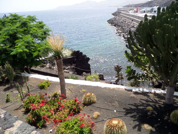 Beauty In Nature Green Growing Holidays. Meditteranean. Seascape. Blu Lakeshore Leading Outdoors Plant Relaxing Moments Rippled Seaview Summer Tranquility Tropical Climate Water
