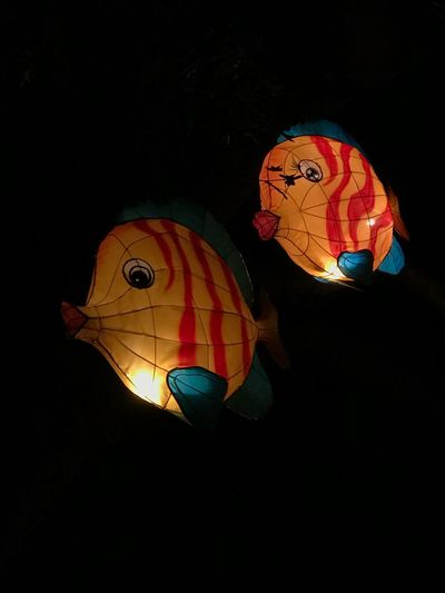 Illuminated lantern hanging against black background