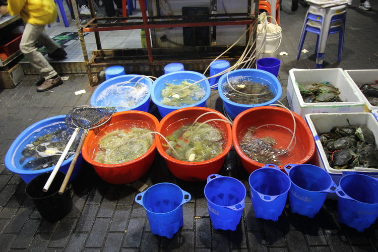 Fish Vendor at a night market in Hong Kong Market Choice Container Day Fish Food Food And Drink For Sale Freshness High Angle View Market Outdoors Real People Retail  Selling Fish Variation