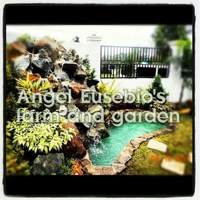 Check This Out Enjoying Life EyeEm Best Shots - Landscape Landscaping_services Quality Satisfaction Originality Good Service