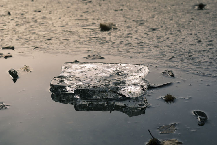 Close-Up Of Water Floating On Lake