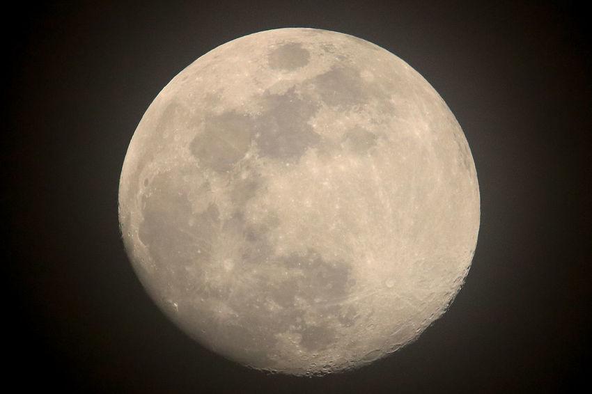 Tadaa Community Malephotographerofthemonth Texas Photographer Moonlight Astronomy Space Moon Clear Sky Half Moon Star - Space Astrology Sign Space Exploration Moon Surface Exploration Astrology