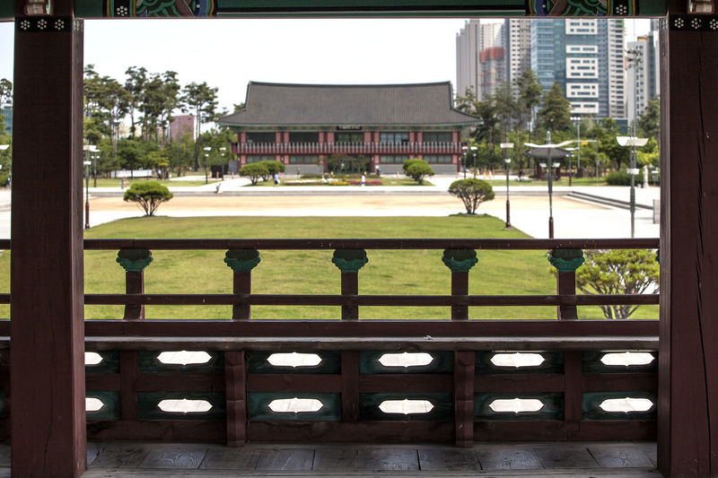 Architectural Column Architecture Bench Benches Building Built Structure City City Life Day Façade Frame In Frame Green Color Growth Korean Traditional Archite Michuhol Park Nature No People Outdoors Songdo, Incheon Tree Wooden
