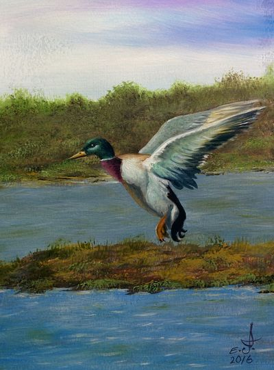 """My dear good friends if you're curious to know who has the biggest heart and soul and a real honest human well here is one who I like to dedicate this painting to one of the nicest and kindest lady in planet Earth ,Alicia Babbitt ,thank you Alicia for everything .oil on canvas 18""""_24 Bird Wildlife Animals In The Wild Flying Motion Spread Wings Nature Tranquil Scene Beauty In Nature Art, Drawing, Creativity Fine Art Oil Painting Drawing My Art Living In Harmony Freedom Living Treasures Nature Life Friendship. ♡   Love ♥ Koi. With"""