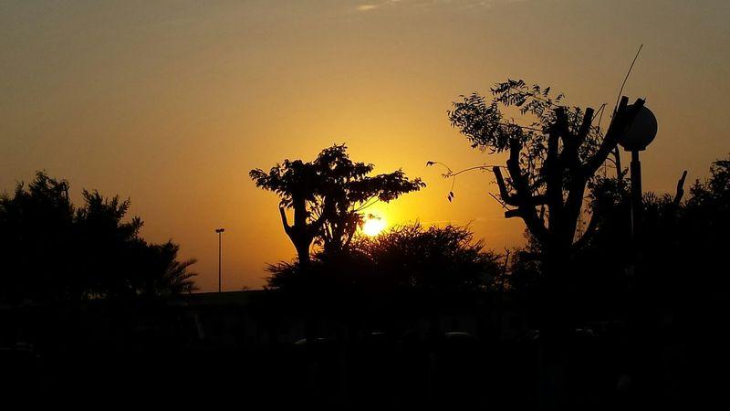 Beautiful Nature Sunsetlover Openskies