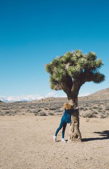 Arid Climate Arid Landscape Beauty In Nature Blue Blue Sky Clear Sky Curly Hair Day Death Valley Death Valley National Park Desert Full Length Girl Joshua Tree Landscape Mountains Nature Nature Outdoors Palm Tree Roadtrip Sand Scenics Sky Tree