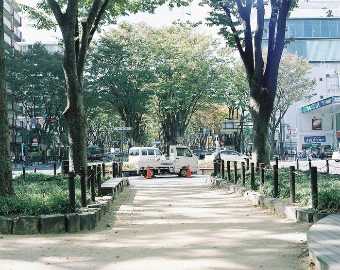 Photography 35mm Film Film 120 Film Filmphotography Japan Eyemphotography 仙台