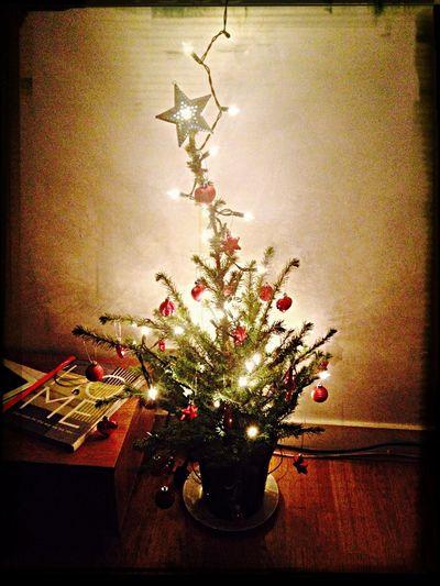 Christmas Tree Pretty Lights