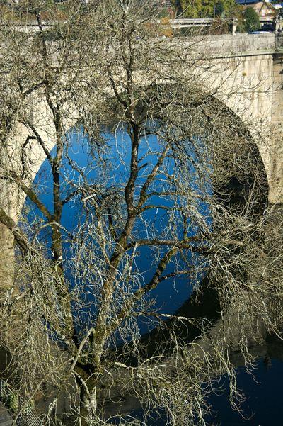 Bridge in Amarante . Tree River .