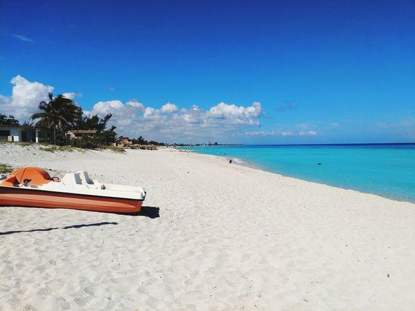 sunbeach EyeEm Selects Tree Water Clear Sky Sea Beach Blue Relaxation Sand Summer Sunny Island