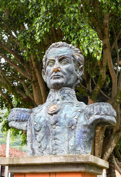 Bust of revolutionary fighter Simon Bolivar in the central plaza of Cabrera, Colombia. American Bolivar Colombia Latin Revolutionary Simon South Tourist Travel America Attraction Cabrera Colombian  Colonial Cundinamarca Destination Historical History No People Old Outdoors Sculpture Statue Tourism Tree