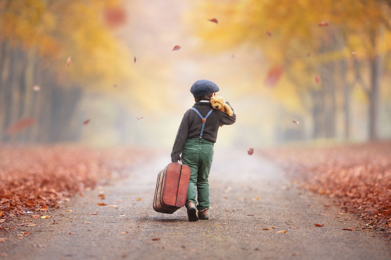 Boy is walking away in the autumn forest with a suitcase and teddy bear