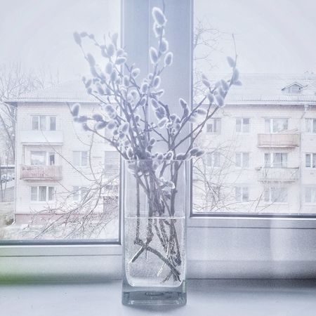My personal Spring Window Wohnglück