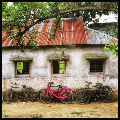 Bicycle infron of a village primary school. Sujanmap School Bicycles Building IPhoneography Bangladeshiphotographer Photographersofbangladesh Photooftheday