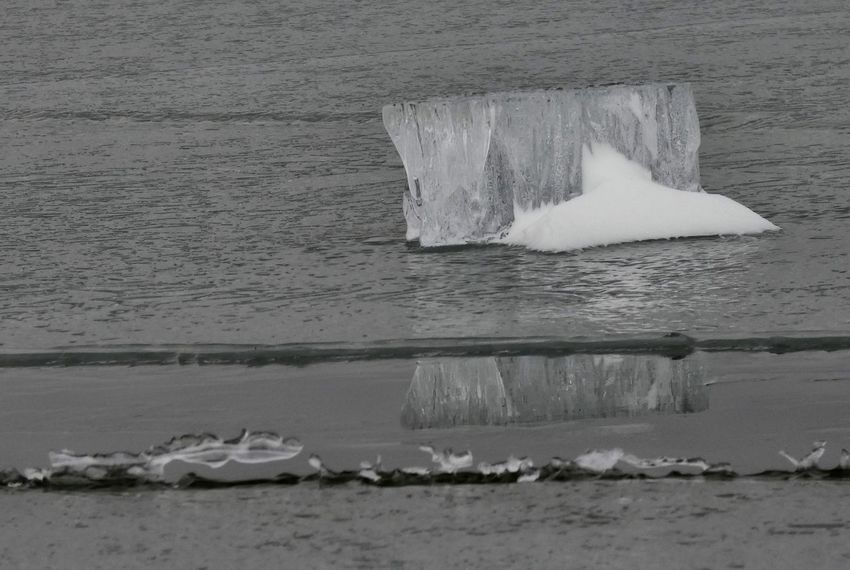 Iced Reflections Winter Lake Reflection Icescape Water Sea No People Nature Day Outdoors Beauty In Nature Iceberg