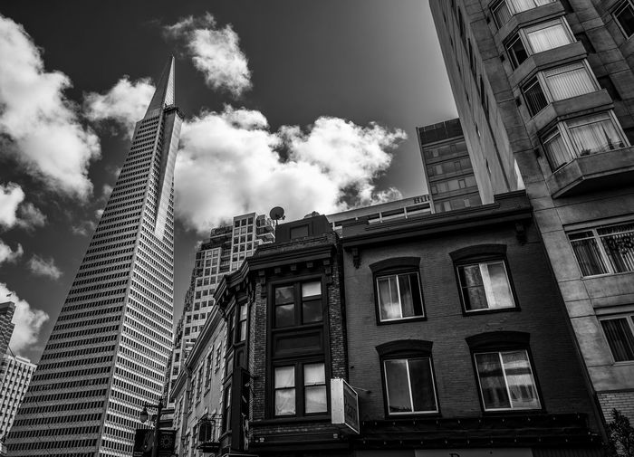 City of The Book TransAmericaBuilding Transamerica Pyramid Downtown Black And White Blackandwhite Black & White Blackandwhite Photography Urban Skyline Urban City Skyscraper Politics And Government Sky Architecture Building Exterior Built Structure Office Building Tall - High International Landmark Urban Skyline Tower Cityscape Tourist Attraction  Financial District