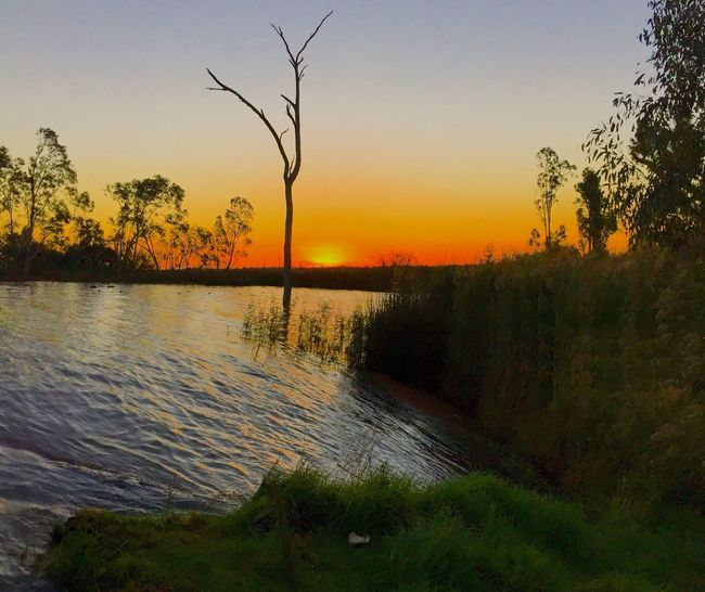The Great Outdoors - 2015 EyeEm Awards Natural Beauty I Love It ❤ Lake Mulwala On My Door Step My Home Amazingly Beautiful