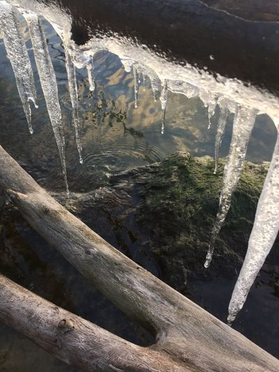 Icicles Cold
